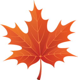 cropped-cropped-autumn_leaves_PNG3608.png